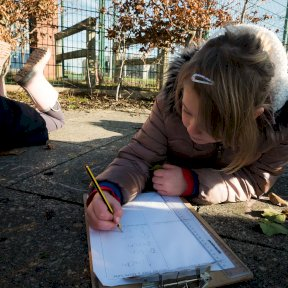 Maths with Outdoor Fridays